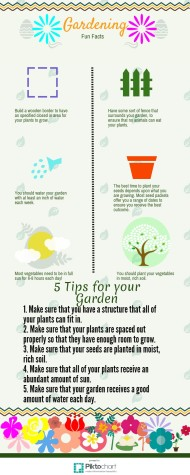 5 steps to the perfect garden