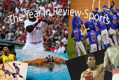 Year in review: sports top 7