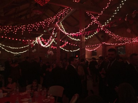 Daddy daughter dance dazzles community