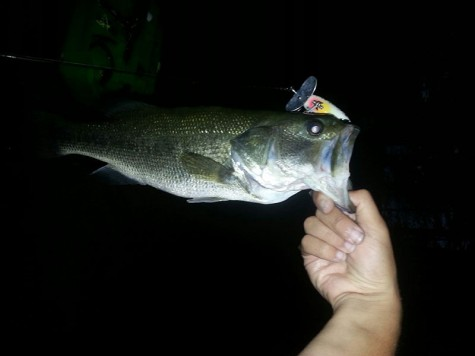 HB looks to join local schools like Milford and Bishop Guertin by having a bass fishing team in the fall.