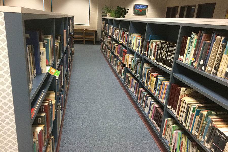 The ever familiar bookshelves of the library.