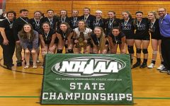 Girls volleyball brings home another title