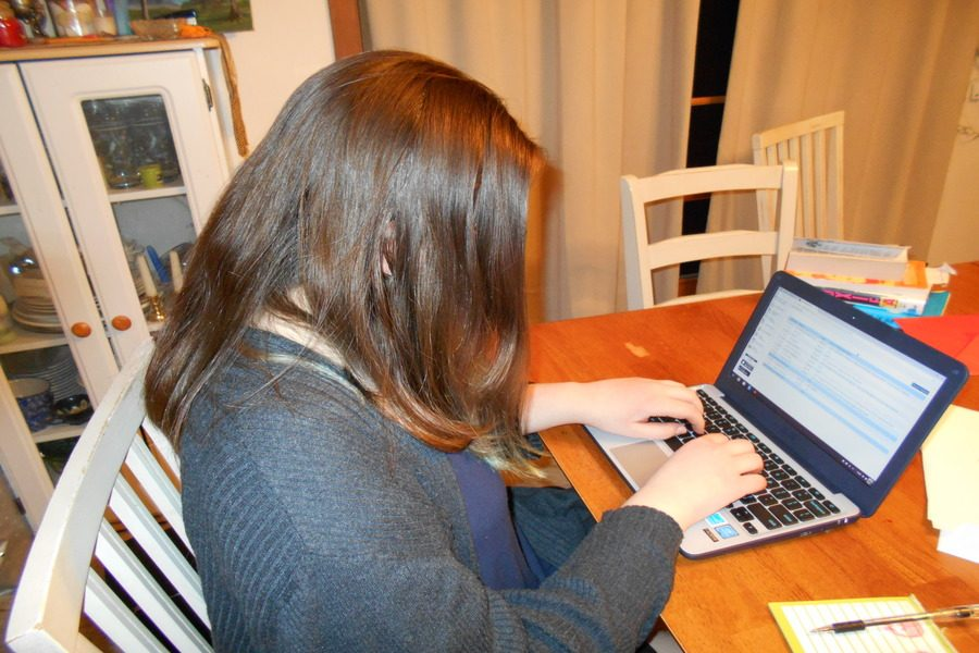 """A student struggles to choose classes for a reasonable schedule, using PowerSchool. It's only been used to register courses for the past ten years, but it makes the process more efficient than older methods. """"I like the PowerSchool system. Kudos to guidance. They do a good job. It's well-done, it works for me,"""" said Roy-Faucher, who uses PowerSchool annually to recommend students for classes."""