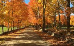 Top 5 places for foliage viewing this fall