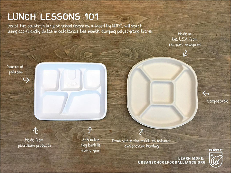"""Comparing the styrofoam and paper trays next to each other, it's clear which choice is best. """"I saw online that Maine banned styrofoam all together, so I think that New Hampshire should try to do that,"""" says Meghan Veino '20."""