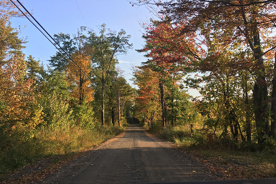 """Leaves are changing and dropping all around New Hampshire, setting the scene that leads us into the beautiful season of Autumn. """"How could you not love it?"""" said Sattler '20"""